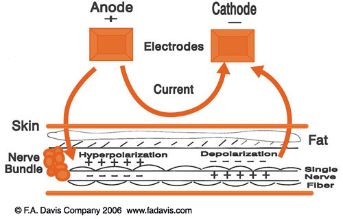 foundations of electrical stimulation